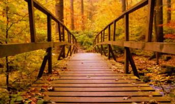 energiek de herfst door